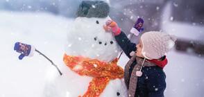 Ще има ли сняг за Коледа и Нова година?