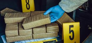 Съдят трима, скрили дрога в кашони с ананас и лайм