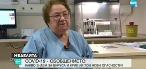 Проф. Аргирова: Осем дни са необходими за създаването на ваксина