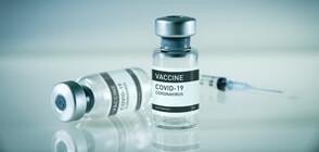 ВАКСИНИТЕ ЗА БЪЛГАРИЯ: До юли ще получим общо 1,5 млн. дози
