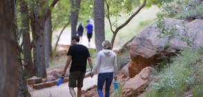 Разходките в парка намаляват стреса след работа