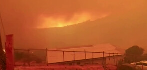 Хиляди евакуирани заради големи пожари в Чили