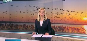 Започна преброяването на дивите птици (ВИДЕО)