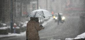 Студ и сняг сковаха голяма част от Европа (ВИДЕО+СНИМКИ)