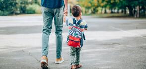 Нови правила за прием в детските градини в София