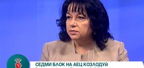 Теменужка Петкова: Цената на електроенергията няма да бъде повишена