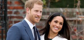 Раздялата с живота в кралското семейство е била невероятно трудна за принц Хари