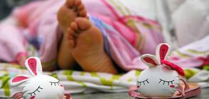 Учени откриха на какво се дължи продължителността на съня ни