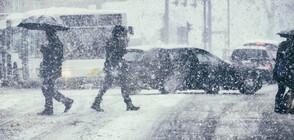 Жълт код за студ и сняг в цялата страна