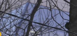 СЛЕД ИНЦИДЕНТА В СОФИЯ: Кабели с ток по дърветата край детска площадка
