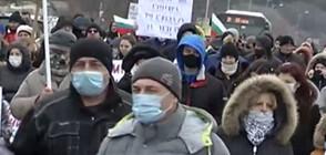 Протест срещу изсичането на гора край Варна (ВИДЕО)