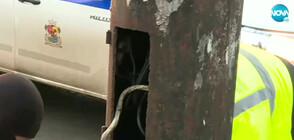 """СЛЕД СИГНАЛИ В """"МОЯТА НОВИНА"""": Монтират капаци на електрическите стълбове"""