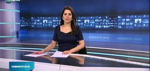 Новините на NOVA NEWS (25.02.2021 - 14:00)