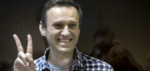 Навални пристигна в наказателната колония за изтърпяване на присъдата си
