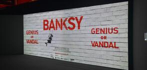 Изложба събира най-значимите творби на художника Банкси (ВИДЕО)