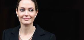 Анджелина Джоли продаде картина на Чърчил за 11,6 милиона долара (ВИДЕО+СНИМКА)