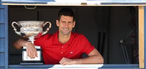Ликът на Джокович от топки за тенис краси Белград (СНИМКИ)
