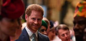 Принц Хари започва работа (ВИДЕО)