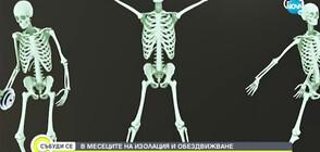 Как да запазим костите си здрави