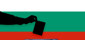 Серия от проблеми в плевенско село преди парламентарния вот (ВИДЕО)