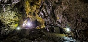Какво разкриват откритите човешки останки от преди 45 000 години