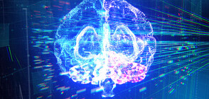 Как COVID-19 засяга нервната ни система? (ВИДЕО)