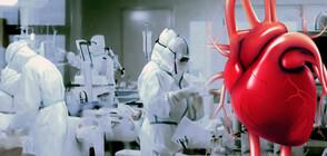 Кардиологът от COVID отделението: Спасете сърцето!