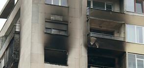 Пожар остави без дом 70-годишна жена, кучето й скочило от 11-я етаж