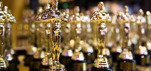 """Любопитни факти за наградите """"Оскар"""" тази година"""