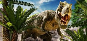 Можел ли е човек да избяга от тиранозавър рекс