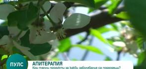 Апитерапия - науката, която изучава приложението на пчелните продукти (ВИДЕО)