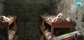 """""""Второто Баташко клане"""" - Трагичната история на църквата в Българово"""