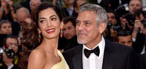 Джордж Клуни си купи имение в Южна Франция