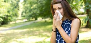 Как да различим алергията от симптомите на COVID-19