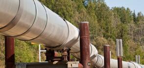 Паднаха цените на петрола (ВИДЕО)