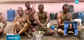 В Индия опитват да лекуват COVID-19 с кравешка тор (ВИДЕО+СНИМКИ)