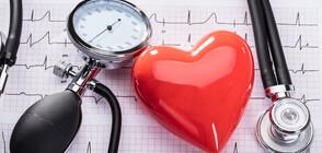 Световен ден за борба с хипертонията