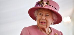 Британци ще садят дръвчета за платинения юбилей на кралица Елизабет Втора