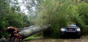 Мощна буря удари Букурещ и нанесе щети