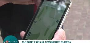 Създават интерактивна дигитална карта на дърветата в София (ВИДЕО)
