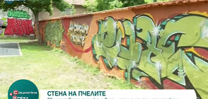 """Стена на пчелите: Рисунка в столичния парк """"Св. Никола"""" напомня за важността им (ВИДЕО)"""