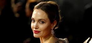 Събира ли се Анджелина Джоли с бившия си (СНИМКИ)