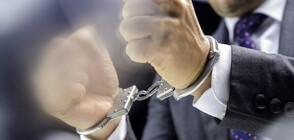 Окончателно: Всички арести след акцията в президенството са незаконни