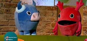 """Проектът """"Арт дъга"""" запознава децата с изкуството чрез кукли (ВИДЕО)"""