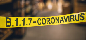 178 new COVID-19 cases reported