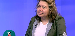 Експерт призова да се създаде закон за защита на свързани със санкционираните (ВИДЕО)