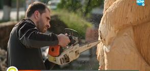 """""""НИЩО ЛИЧНО"""": Лекарят, който оперира и вае скулптури от дърво (ВИДЕО)"""