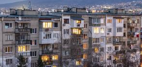 Софиянец хвърли домашния си любимец от шестия етаж