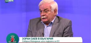 Валентин Радомирски: Българската позиция за Северна Македония не може да бъде променена (ВИДЕО)