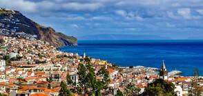 РАБОТА В РАЯ: Дигитални номади на остров Мадейра